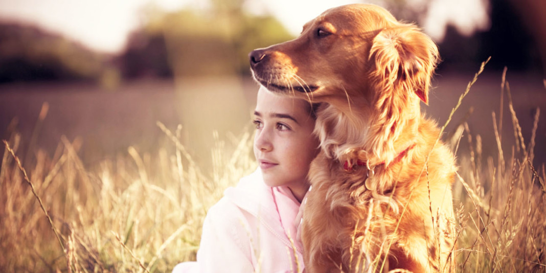 Top 10 Kid-Friendly Dog Breeds (Part 2)
