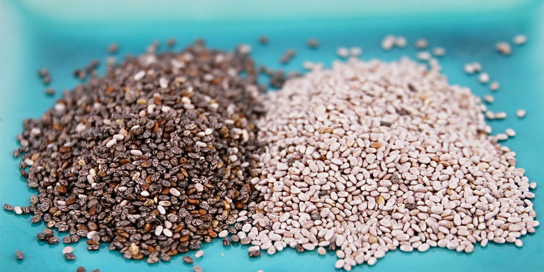 Chia: 15 Things You Didn't Know (Part 1)