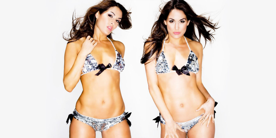 Top 20 Most Beautiful WWE Divas Running The Ring In 2016